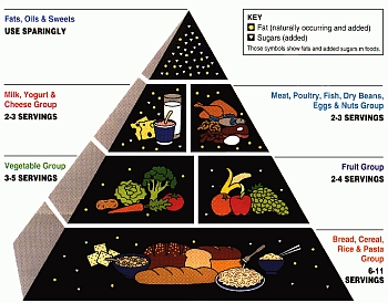 USDA food pyramid 1992