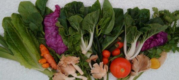fresh vegetables in Kuala Lumpur on thrivelowcarb.com