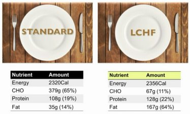 standard versus LCHF meal compositions by Dr Caryn Zinn on thrivelowcarb.com